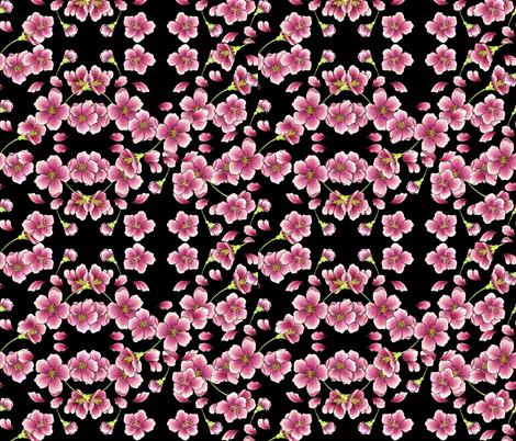 Cherry Blossoms on black