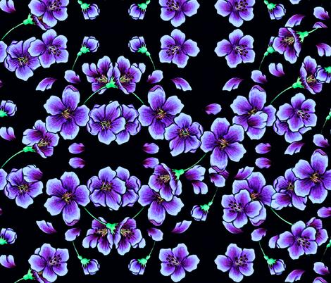 Violets on Black