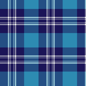 Earl of St. Andrews / St. Andrews District tartan