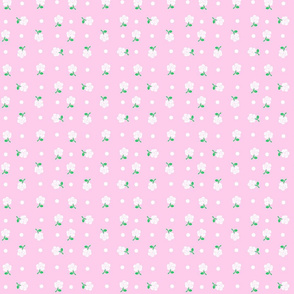 White rose & polka dot on pink