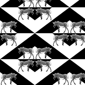Zebra Triangles