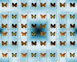 Butterflies_lines1_thumb