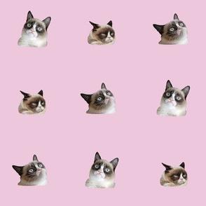 Grumpy Tardar Pink