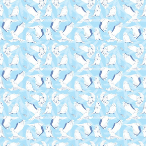 Sky Blue Snow Owls