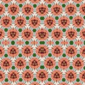Lupine Kaleidoscope 1