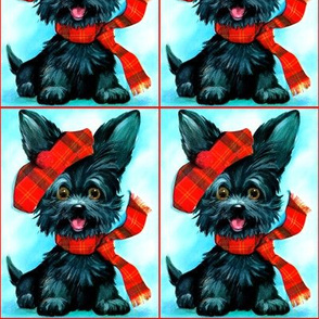 Scottish Yorkshire Terrier dogs puppy puppies tartan hats berets scarf scarves lolita Schnauzer