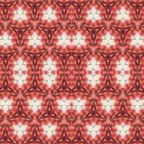 Lupine Kaleidoscope 4