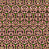 Lupine Kaleidoscope 7