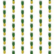 Pineapple Stripe on White