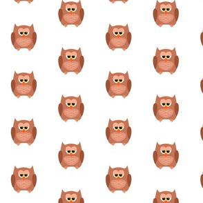 Owl I Got