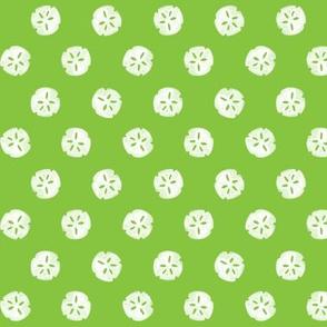 sandollars - green
