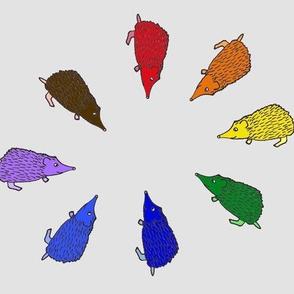 rainbowhedgehogs