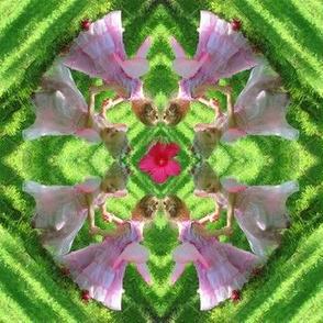 Fairy Flower Kaleidoscope