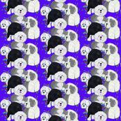 Star Spangled Sheepies