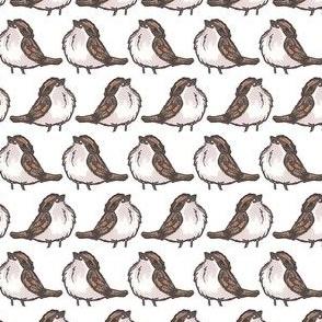 Proudest Bird Puff