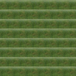 Rippling Fields of Green Pastures - Small Scale Horizontal Stripes (Ref. 3675b)