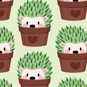 Hedgehogs disguised as cactuses