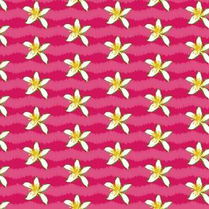 Lemon_Blooms-01
