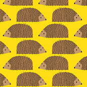 Hedgehog on yellow