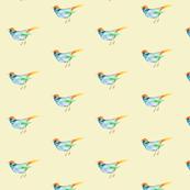 SongBird Blue & Orange on Cream