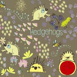 Curious hedgehogs