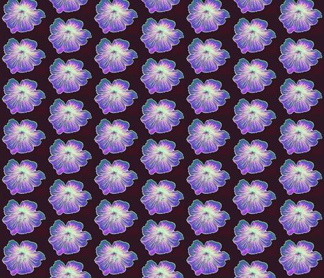 geranium-cranesbill_