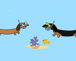Dachshunds_underthesea_10_thumb