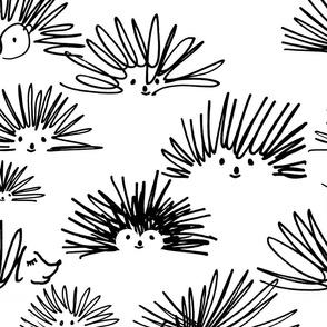 hedgehog squiggles