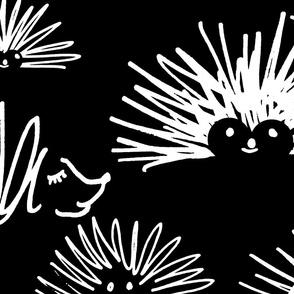 hedgehog squiggles reverse
