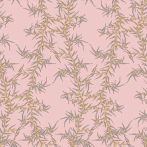 Pink Vine