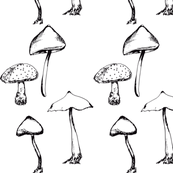 Mushrooms Drawing, Black & White