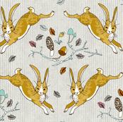 Hopping Hares (mushroom)