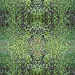 Beautiful Jade Leafy Lace (Ref. 1646)
