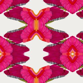 Pink Wings
