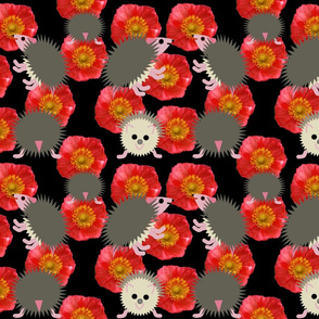 Hedgehogs_on_poppies_in_darkness