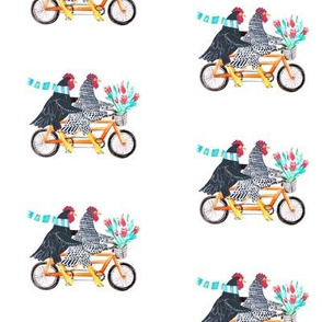 Key West Chickens on a Bike