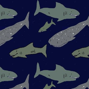Shark Shark Whaleshark
