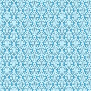 Blue_Lace_2-01