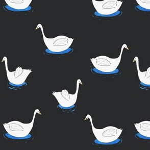 swans_on_black