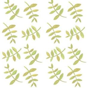 leaves_on_white