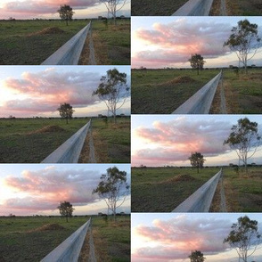 Along the Fenceline to Sunset - Australian Landscape (Ref.0437)