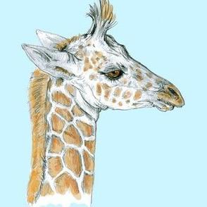Baby Giraffe for Minky Baby Blankets