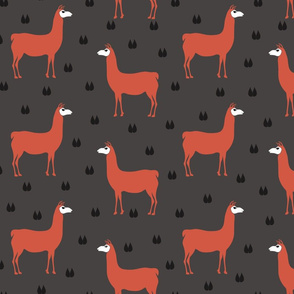 Oh llama