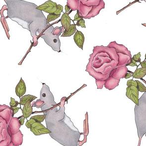 mouseroserandom2