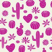 Cacti purple