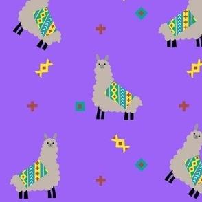 Llamas with Blankets