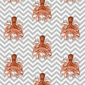 Mini Octopus on Chevron