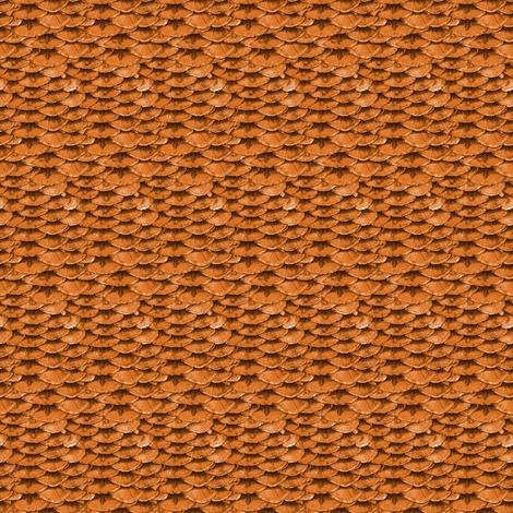 Goldfish Scales