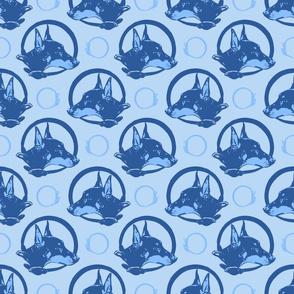 Collared German Pinscher portraits - blue