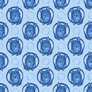 Collared Swedish Vallhund portraits - blue